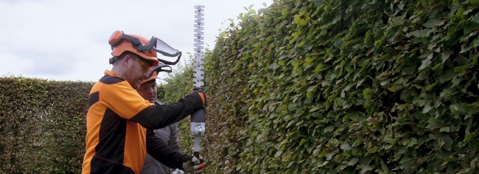 Hedge cutting, hedge management