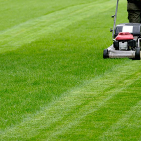 Lawn Care and lawn maintenance